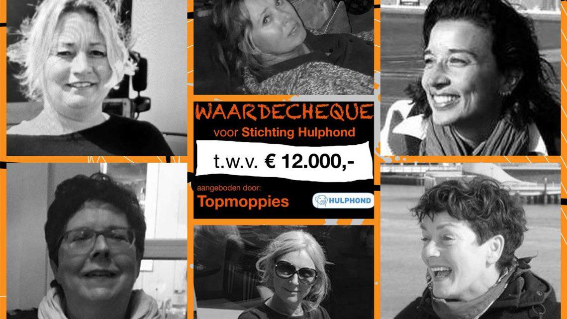 Donatie Stichting Hulphond Nederland